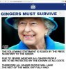 queen re ginger.jpg