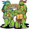 Turtle RN