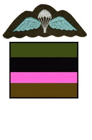 1 AARSE Battalion, Parachute Regiment