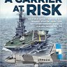 A Carrier at Risk by Mariano Sciaroni