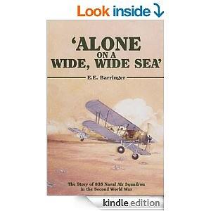 alone on a wide wide sea