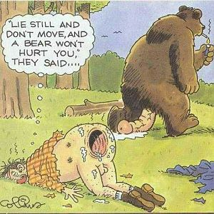 Survival tips for bear attacks